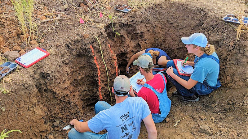 Soil Judging team in soil pit