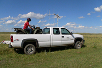 Senior Fisheries and Wildlife major Jessica Edgar uses radio telemetry to track prairie chicken hens and their broods. Many of the sites she monitors are on private ranch land. She travels the hilly landscape using a truck, then an ATV, and often walks miles on foot.