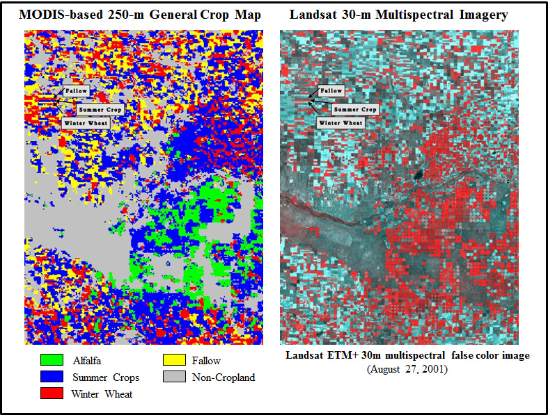 A 250-meter crop map derived from multitemporal MODIS vegetation index (VI) data and multispectral 30-meter Landsat imagery over southwest Kansas.  Field-level crop patterns and conditions can be mapped and monitored using time-series MODIS VI data detect changes in land use/land cover patterns, assess crop conditions, monitor crop phenology and estimate biophysical characteristics of crops.