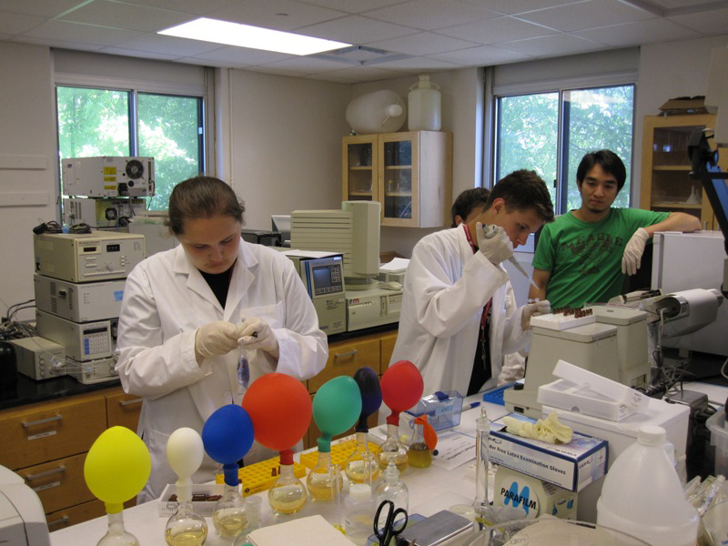 Student participating in lab expirment durning summer camp.
