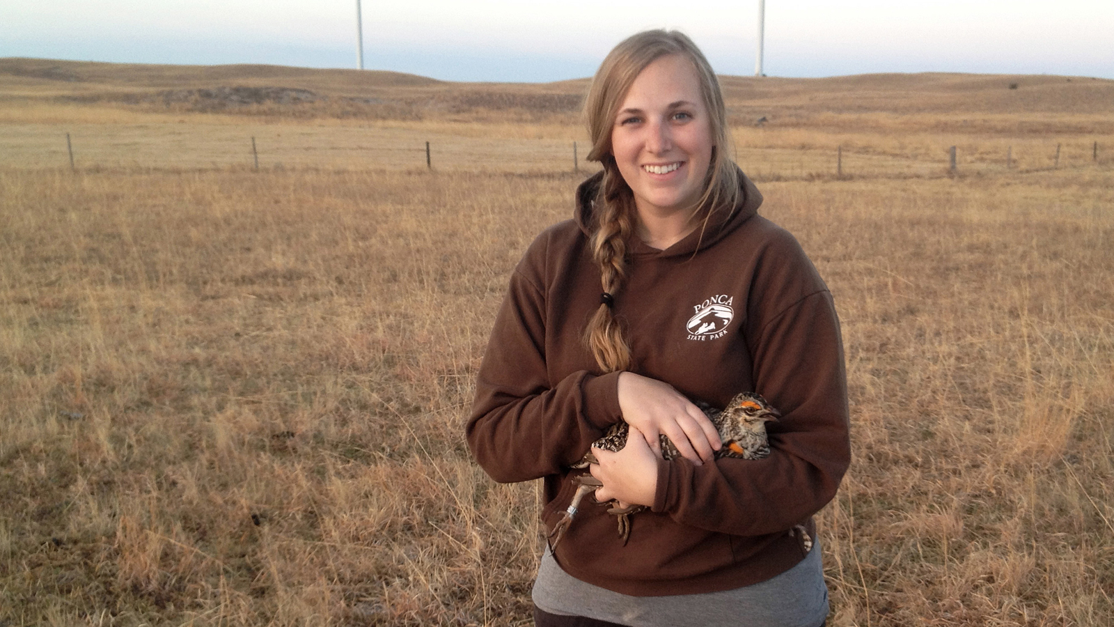 SNR Alumni: Jocelyn Olney Harrison - Greater prairie-chicken nest site selection unaffected by wind energy facility