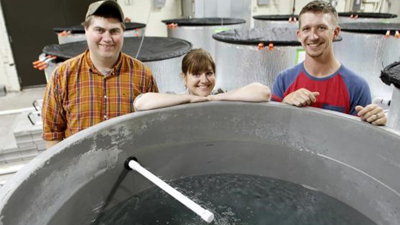 "Assistant professor Jamilynn Poletto and two of her graduate students built the The Fish Conservation Behavior and Physiology Lab from the ground up in an old red brick building on East Campus. ""There was literally nothing in here,"" Poletto said."