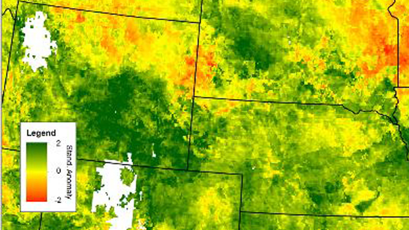 A newly published study in Weather, Climate and Society compares agricultural stakeholders' perceptions of the flash drought the developed across upper Great Plains states in 2016 with datasets used to compile the U.S. Drought Monitor during that same time period.