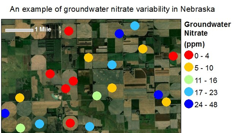 Why does groundwater nitrate vary so much across Nebraska?