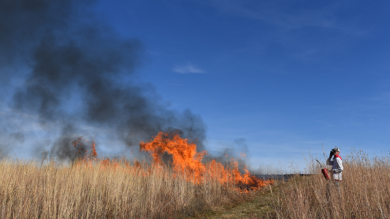 Prescribed burn an educational opportunity for students