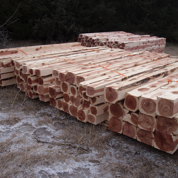 Eastern redcedar logs removed from oak woodlands to be utilized by commercial timber mills.