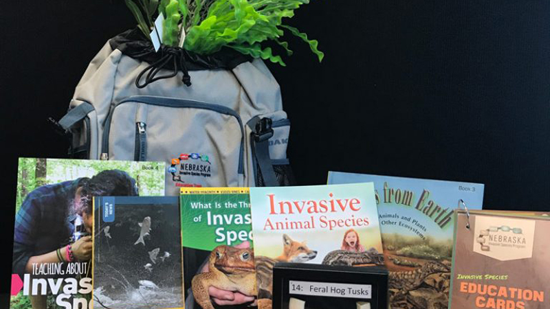 Invasive Species Education Trunk Contents